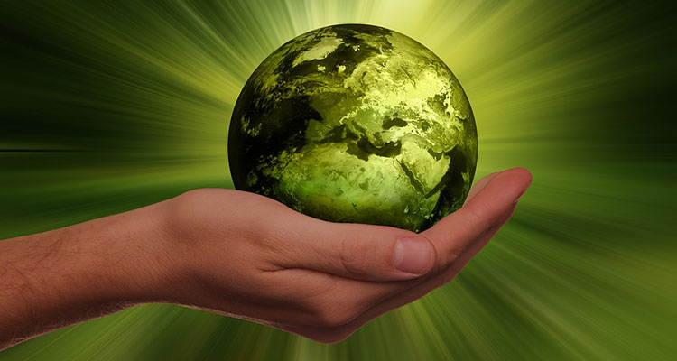 La energía renovable y sus fuentes